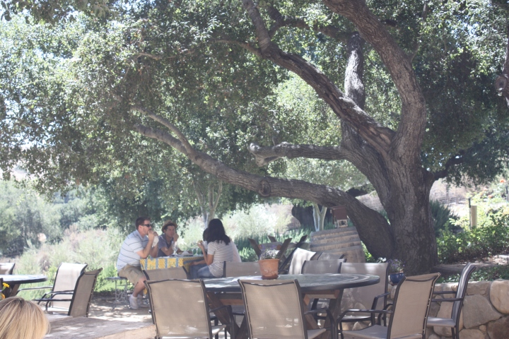 Visitors enjoying the outdoor tasting area...
