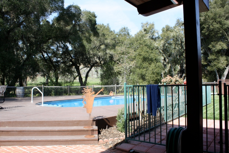 The backyard pool at Per Cazo Cellars