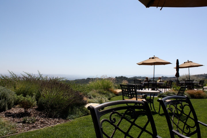 The view at Calcareous Vineyard