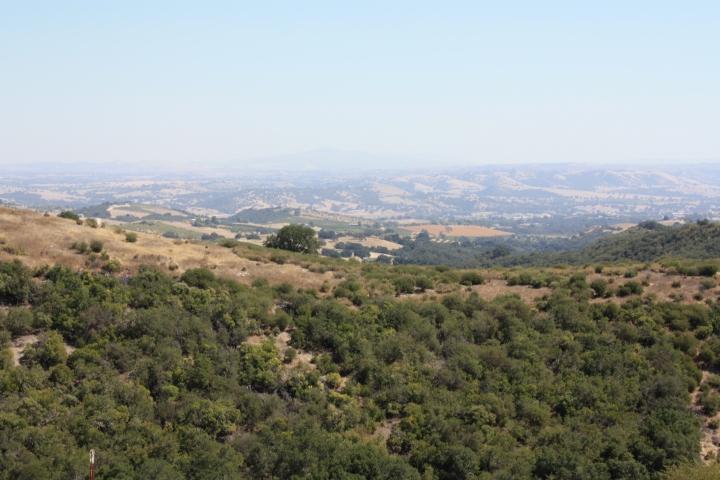 The glorious view at Calcareous Vineyard...