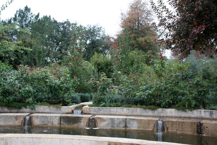 Beautiful gardens at VML Winery