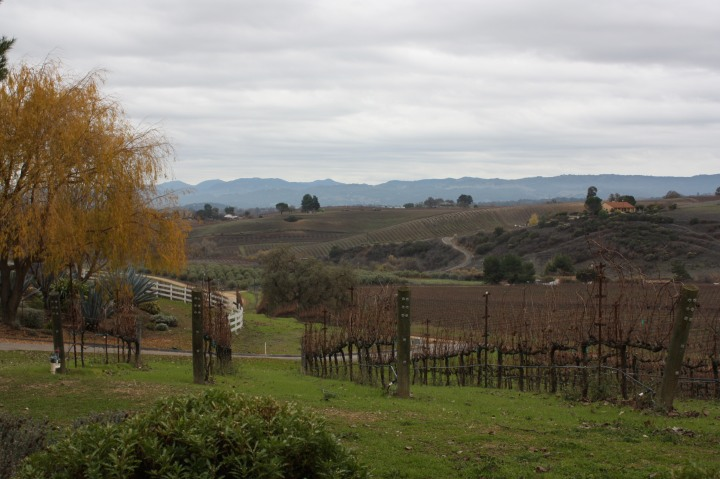 The stunning views at Terry Hoage Vineyards