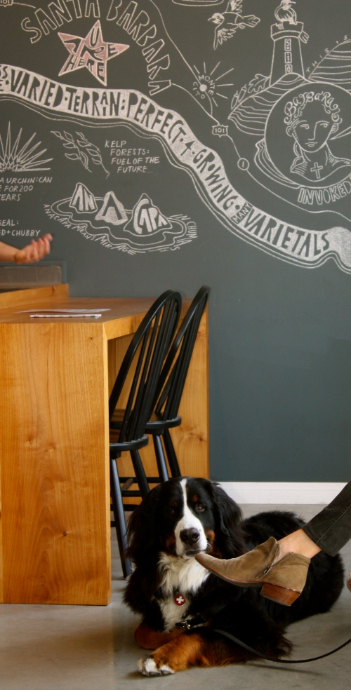 The AVA Santa Barbara tasting room is very dog friendly
