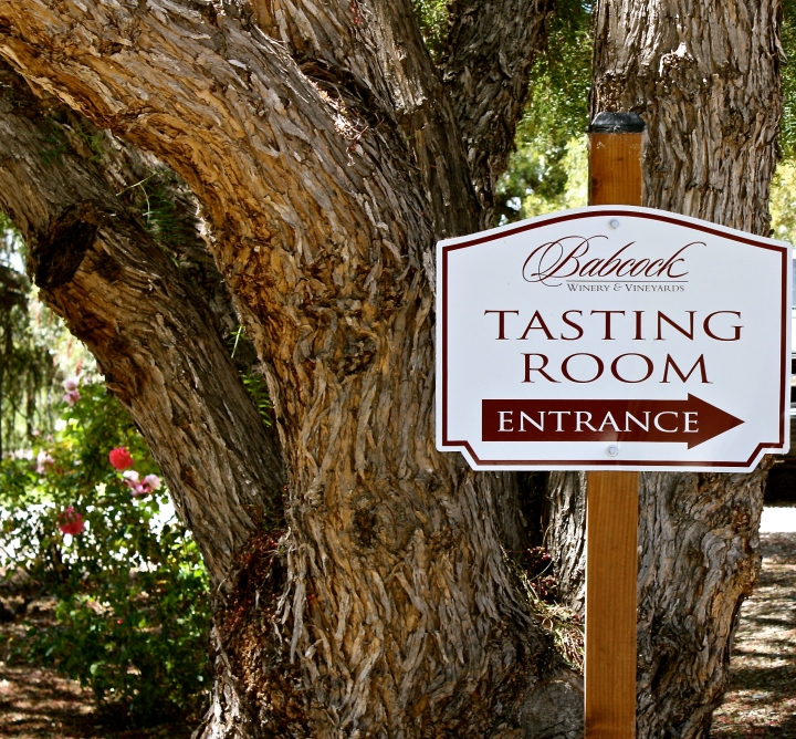 Babcock Winery & Vineyards | Lompoc, CA