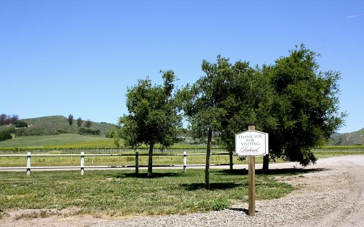 Beautiful outdoor area at Babcock Winery & Vineyards
