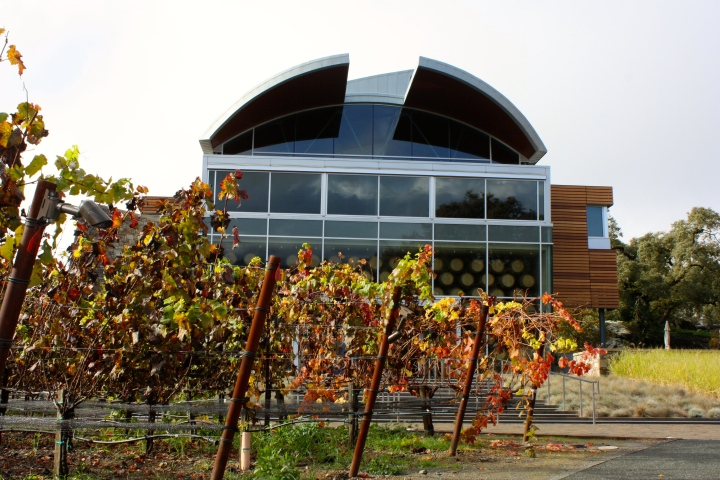The stunning Williams Selyem Winery