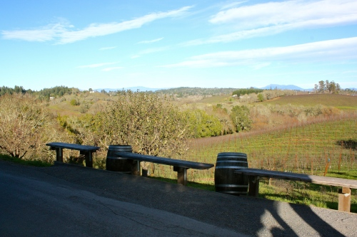 The gorgeous view from Iron Horse Vineyards