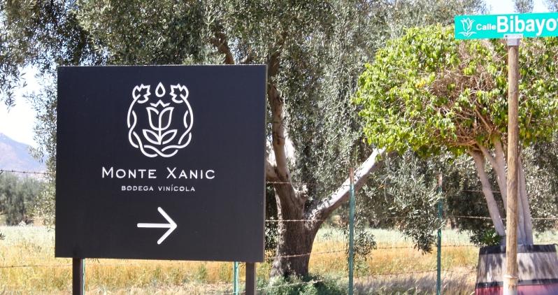 Monte Xanic