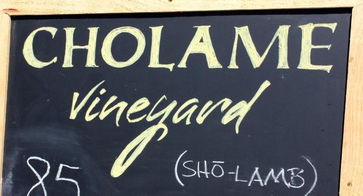 Cholame Vineyard